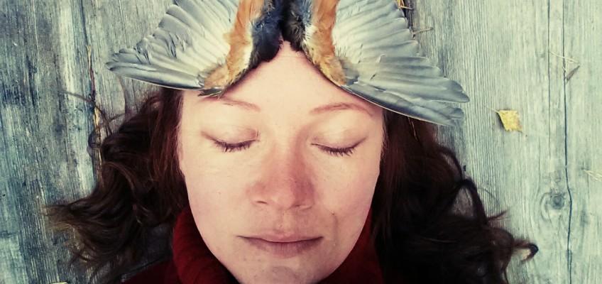 Linnut polullani